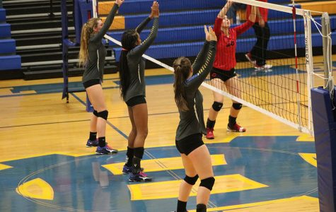 Volleyball places 4th in 4A Division