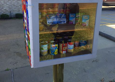 Little Food Pantry goes a long way